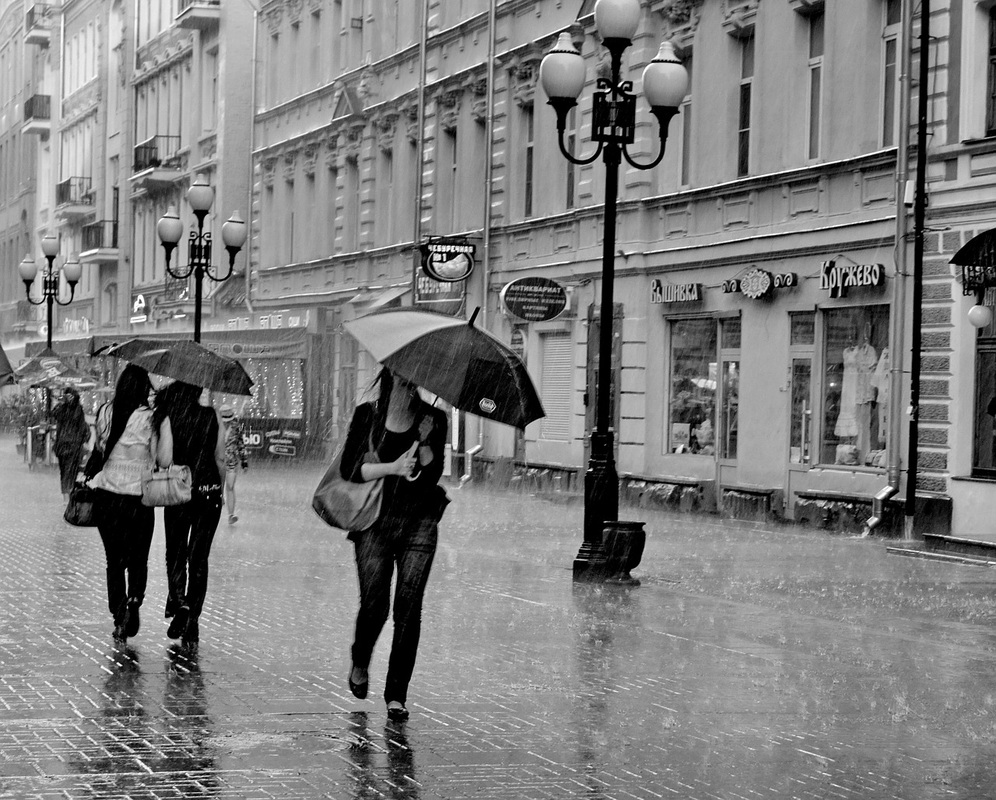 High street in the rain